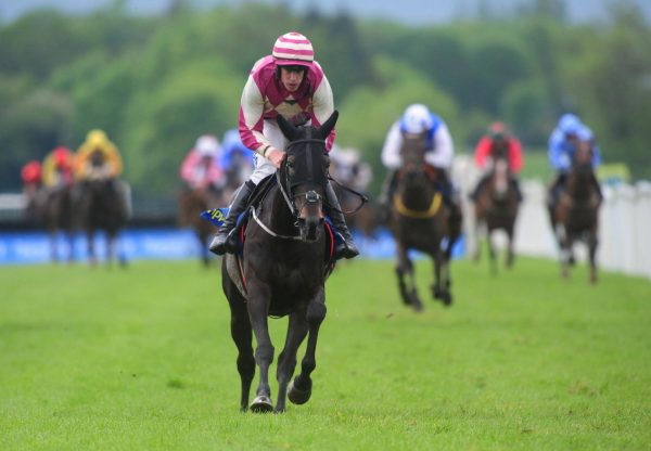 The Yeats Mare Dolly Dancer Wins At Tipperary