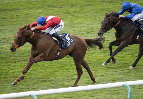 Who's Steph (Zoffany) winning the G3 1,000 Guineas Trial at Leopardstown