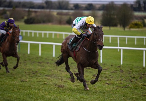 Three Stripes Light (Leading Light) Wins On Debut At Navan 1