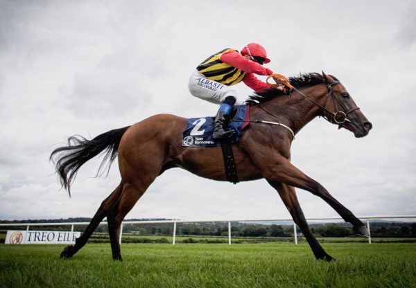 Thunder Eclipse (Holy Roman Emperor) Wins His Maiden Impressively At Naas