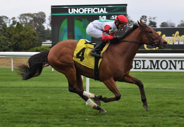 Turned Aside (American Pharoah) winning his maiden at Belmont Park