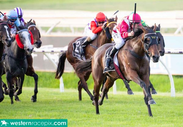 Tuscan Queen (Fastnet Rock) wins the Gr.3 West Australian Oaks at Ascot