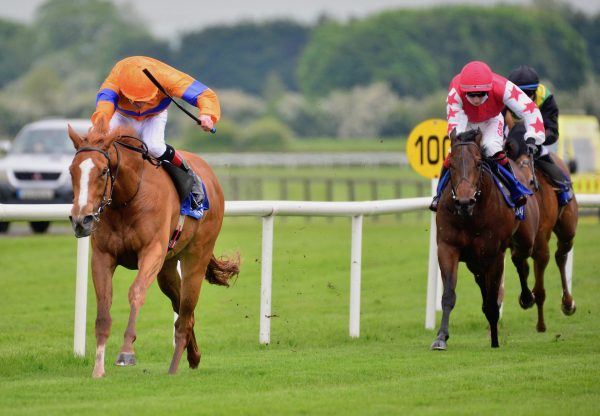 Velocidad (Gleneagles) Makes A Winning Debut At Fairyhouse