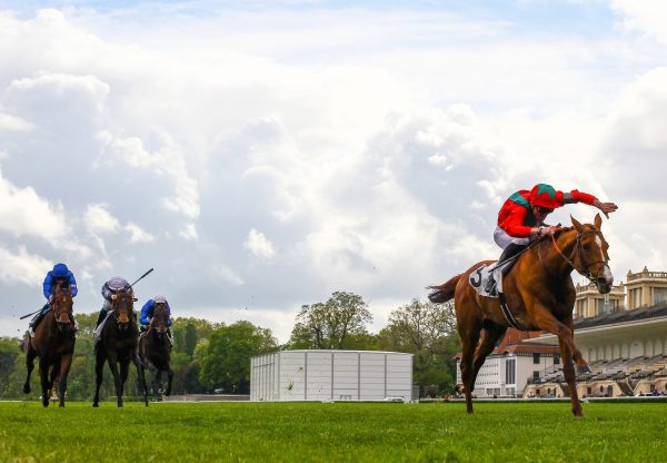Waldgeist (Galileo) Wins The Group 1 Prix Ganay at Chantilly