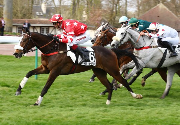 Walk In The Park Filly Golden Park Wins Over Hurdles