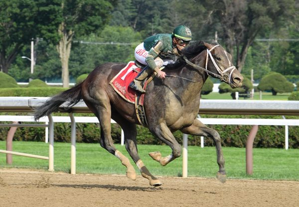 Wit (Practical Joke) Wins The Gr.3 Sanford Stakes at Saratoga