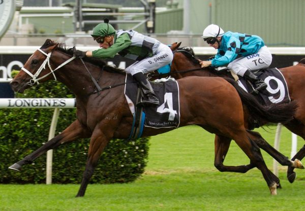 Yes Yes Yes Winning The Gr 2 Todman Stakes