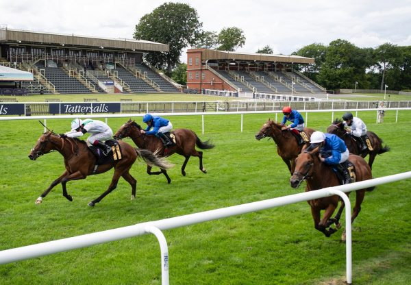 Youth Spirit Wins His Maiden At Newmarket 1