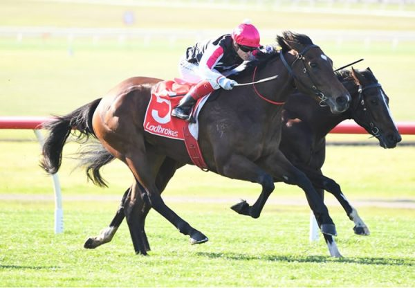 Zacouver (Vancouver) winning at Sandown