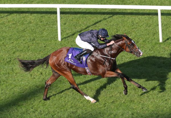 Anthony Van Dyck (Galileo) winning the G3 Tyros Stakes at Leopardstown