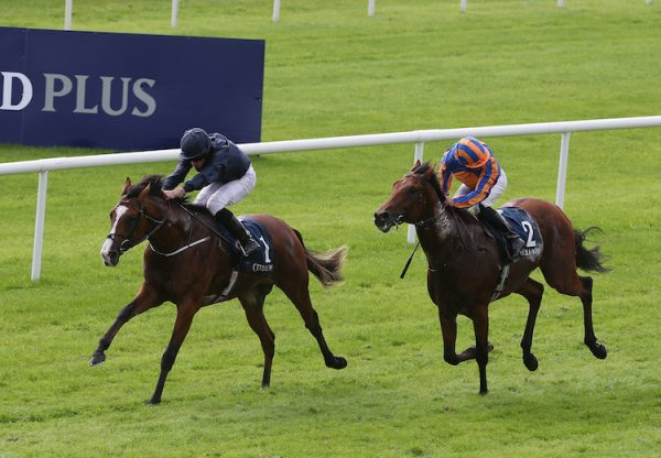 Anthony Van Dyck (Galileo) winning the G2 Futurity Stakes at the Curragh