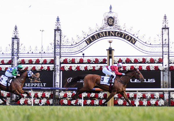 Arcadia Queen (Pierro) wins the Gr.1 Mackinnon Stakes at Flemington