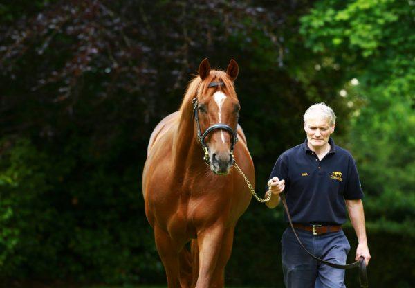 Arthur Kitt (Camelot) winning the Listed Chesham Stakes at Royal Ascot