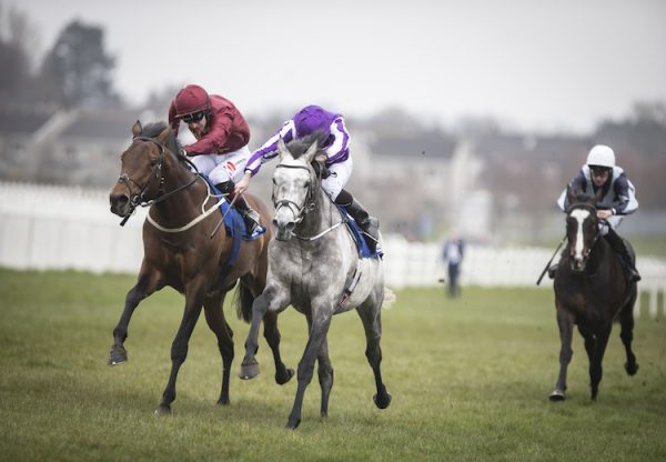 Capri (Galileo) winning the G3 Alleged Stakes at Naas
