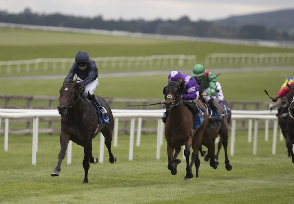 Cardini (Magician) winning a nursery at the Curragh