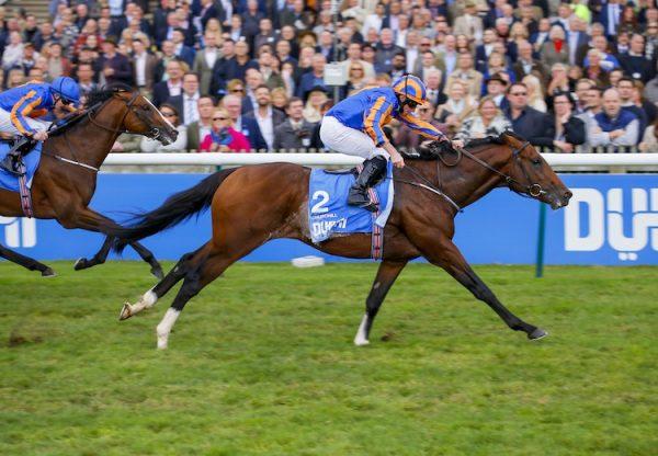 Churchill (Galileo) winning the G1 Dewhurst Stakes at Newmarket