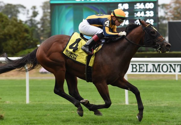 Four Wheel Drive (American Pharoah) winning the Gr.3 Futurity Stakes at Belmont