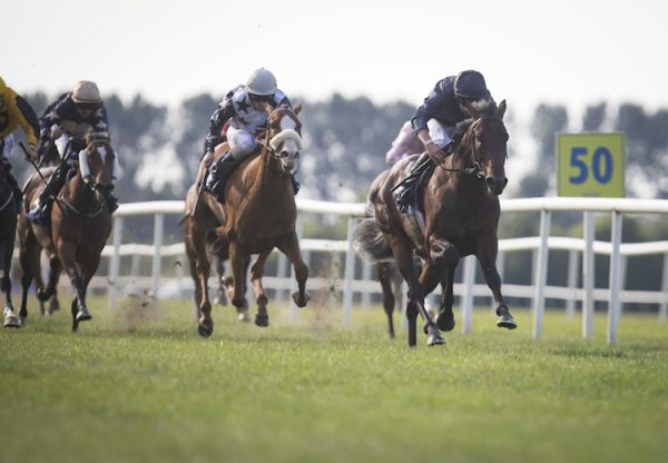 Land Force (No Nay Never) winning the Listed Tipperary Stakes at Tipperary