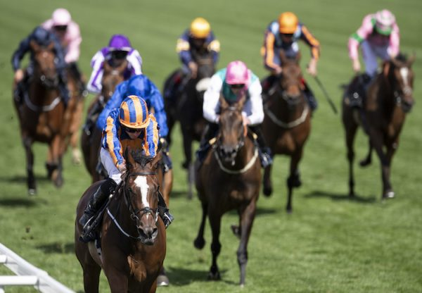 Magic Wand (Galileo) winning the G2 Ribblesdale at Royal Ascot