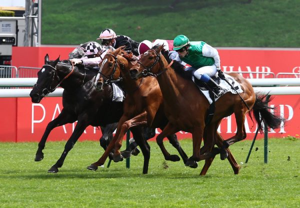 Marathon Man (So You Think) winning the Listed Prix Jacques Laffitte at Longchamp