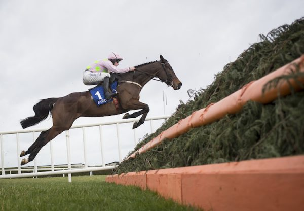 Min (Walk In The Park) winning the G2 Coral Dublin Chase at Leopardstown