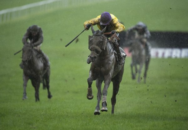 Pablo Diablo Becomes The Latest Winner By Zoffany