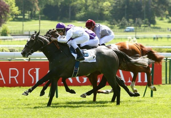 Neufbosc (Mastercraftsman) winning the Listed Prix de l'Avre at Paris Longchamp
