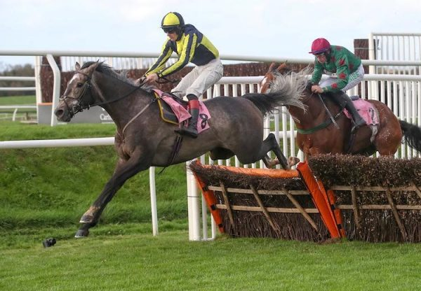 One For Rosie (Getaway) jumping the last before going on to win at Carlisle