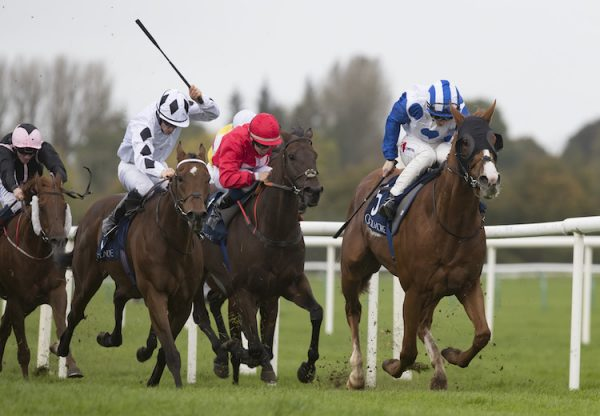Psychedelic Funk (Choisir) winning the G3 Gladness Stakes at Naas