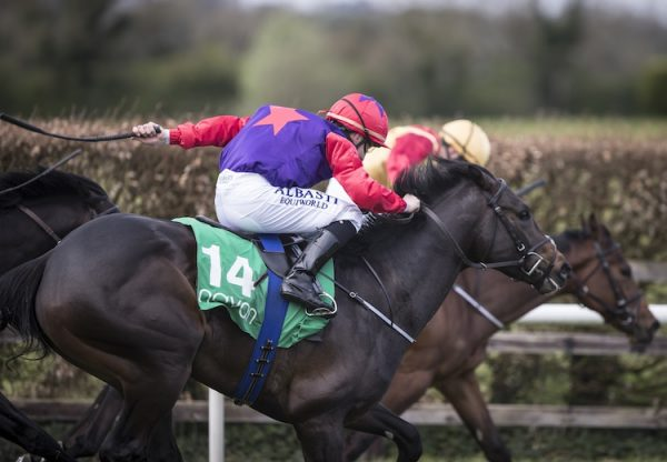 Romanised (Holy Roman Emperor) winning his maiden at Navan