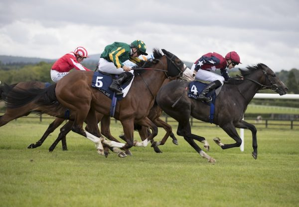 True Blue Moon (Holy Roman Emperor) winning the Listed Rochestown Stakes at Naas