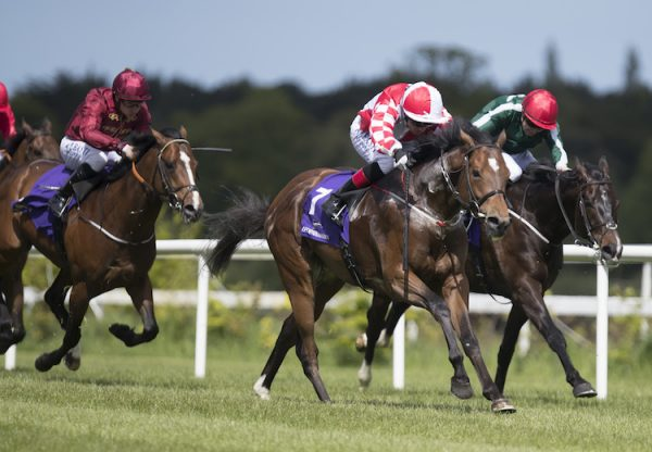 Zihba (Choisir) winning the G3 Amethyst Stakes at Leopardstown