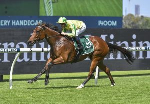 I Thought So (So You Think) winning at Randwick