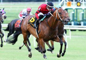 Japan (Galileo) winning the G2 Beresford Stakes at Naas