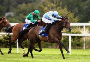 Jenny Flex (Walk In The Park) Wins The Four Year Old Mares Maiden At Cork