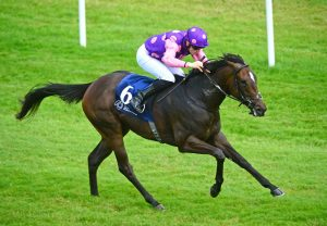 Ifyoucatchmenow (Westerner) Wins Her Maiden Hurdle At Fairyhouse