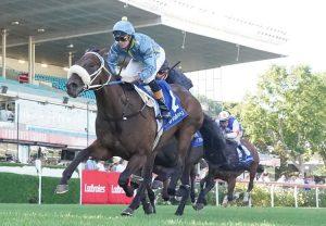 Sopressa (So You Think) winning the Australasian Oaks at Morphettville Parks