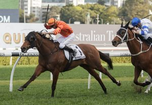 Thee Auld Floozie (Mastercraftsman) winning the Listed J Swap Contractors Sprint at Te Rapa