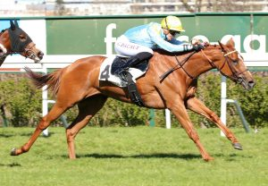 Angel's Share (Soldier Of Fortune) winning the Listed Prix Rose Or No hurdle at Auteuil