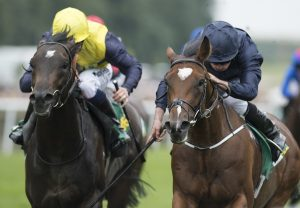 Gustav Klimt Superlative Stakes Head On Rp Web