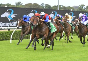 Think It Over (So You Think) winning the Gr.1 George Ryder Stakes at Rosehill
