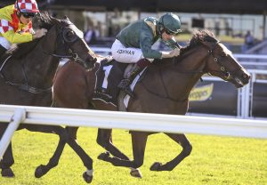 Kings Legacy Winning G1 Champagne Stakes