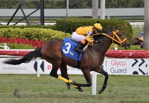 Art Du Val Becomes Latest Stakes Winner By No Nay Never