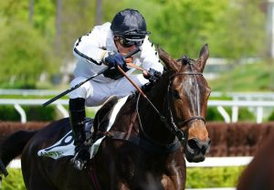 Another Miracle (American Pharoah) winning at Saratoga