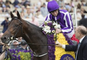 Mendelssohn after winning the G1 Breeders Cup Juvenile Turf at Del Mar