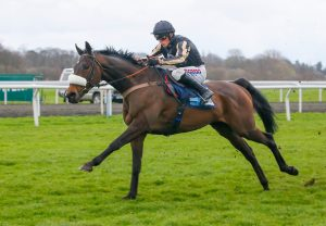 Pour Moi ex Tracker selling for €65,000 at the Tattersalls Ireland August Sale at Fairyhouse