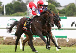 Chindit (Wootton Bassett) Wins the Gr.3 Greenham Stakes at Newbury