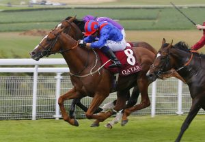 Set In The West (Westerner) Lands The Mares Maiden At Lisronagh