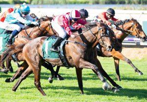 Marown Wins The Novice Chase At Ayr 1