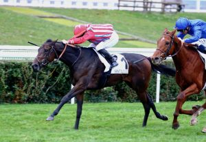 Journey With Me (Mahler) Wins The Bumper At Gowran Park